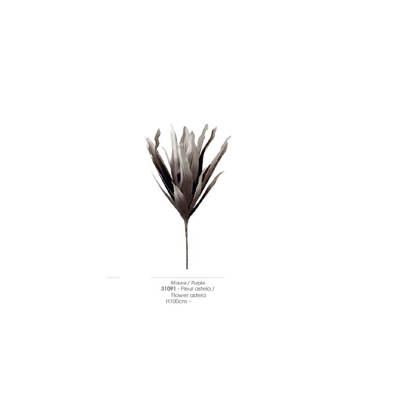 Fiore Asteia 31091