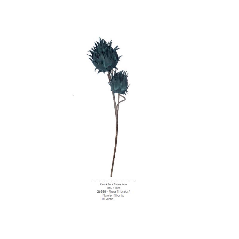 Fiore Fittonia 26588